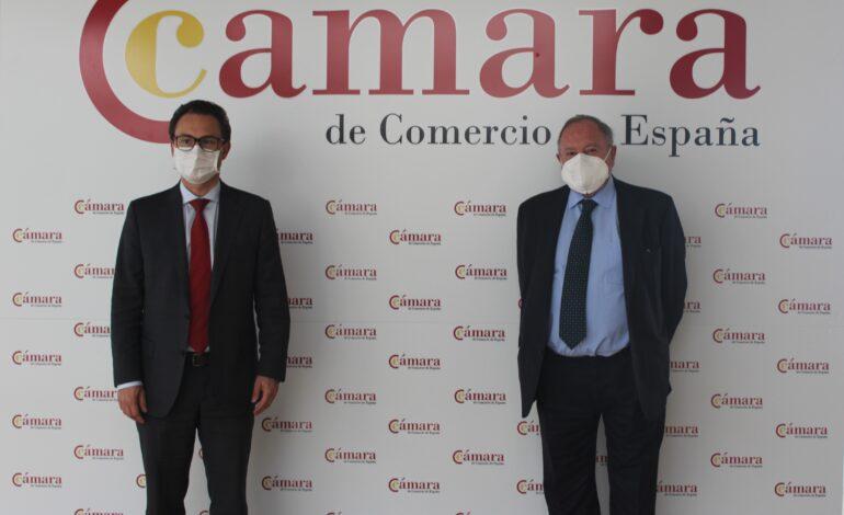 Cámara de Comercio de Bogotá lanza en Europa su estrategia de internacionalización para la reactivación económica