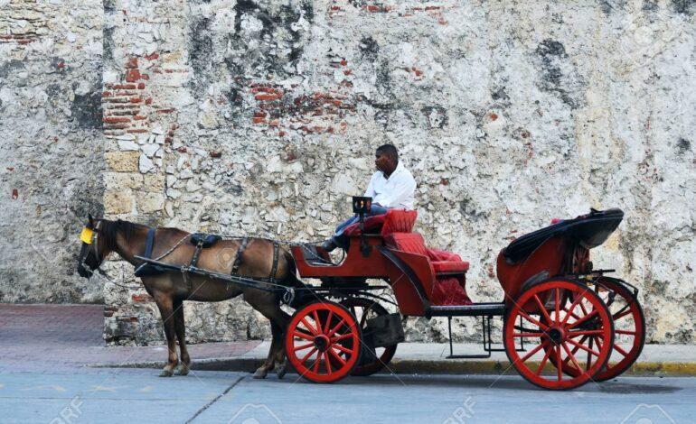 Procuraduría inició acción preventiva para proteger los caballos utilizados en coches turísticos en Cartagena
