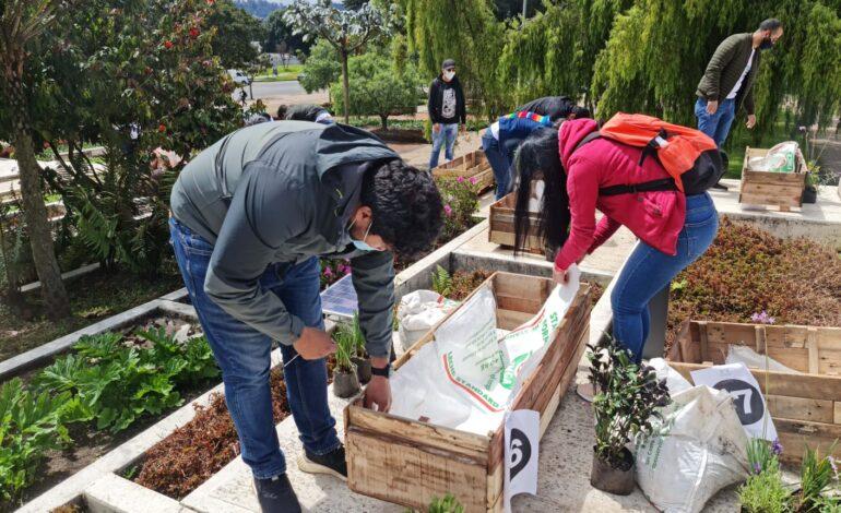 Greenyellow, en alianza con la Corporación Sílaba, inauguran el primer corredor verde sobre cemento en la localidad de Suba